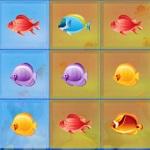 صور الاسماك المتشابهة